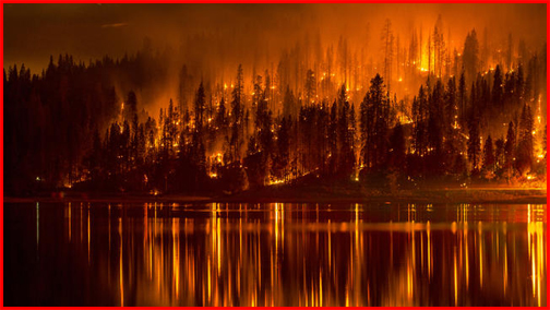 Image result for fire champion wisconsin